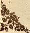 Lábléc dekoráció / Footer decoration