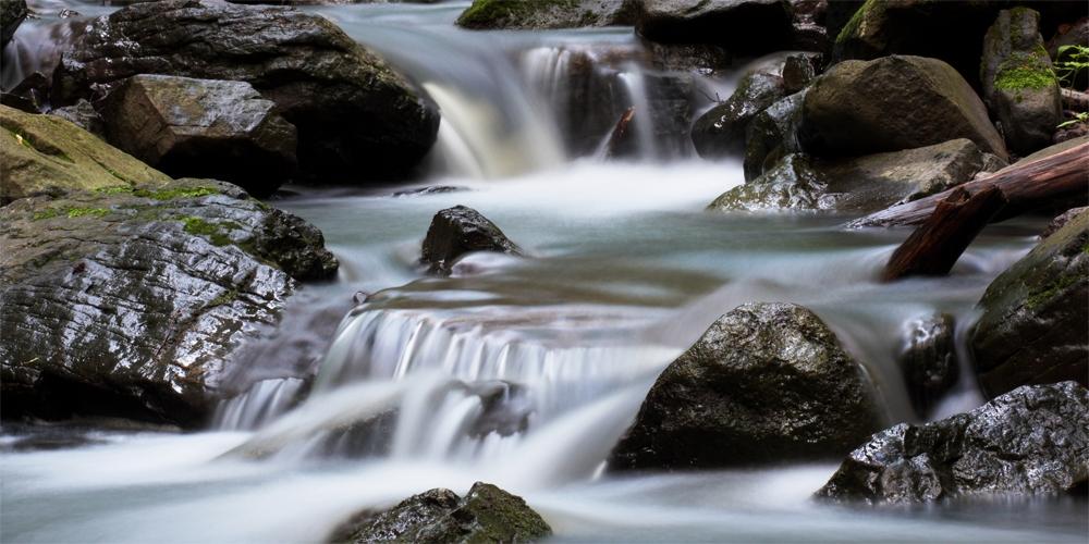 Rumbling brooks | Walk the shady valleys